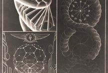 Math life / Sacred Geometry and the secrets of the universe