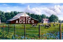 All things Aggie / by Rosie Whiting