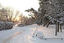 Winter auf Usedom / by Seetel Hotels