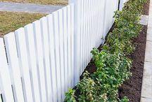 white picked fences