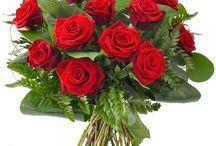Florarie Huedin Florisis