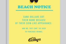 CheapCaribbean.com Presents: #BeachNotices / Tidbits about our favorite place... the beach. / by CheapCaribbean.com