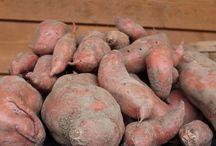 Potatoe boxes / Potatoe boxes