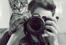 kitty / by Taew e'Taew