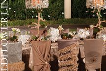 Chair's with Swagger / Chairs with accents of decor for those special occassions