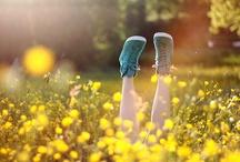 Wiosna & Lato - Zapachowe Inspiracje / Świece Yankee Candle słyną z tego, że w swoich zapachach zamykają wyjątkowe momenty i wspomnienia każdej pory roku i każdego wydarzenia. Przywołaj wspomnienia rozkwitających kwiatów (Honey Blossom), zachodu słońca (Lake Sunset), plaży (Beach Wood, Sun & Sand), letnich romantycznych wieczorów (Midsummer's Night) czy egzotycznych wakacji spędzonych w tropikach (Waikiki Melon, Under the Palms)