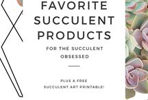Products I Love / Fabulous products to beautify your space