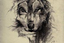 Desenhos De Lobos
