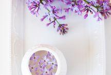 Lilacs. ❤
