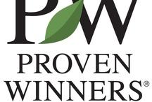 Proven Winners Garden Gurus / by Jean Ann Van Krevelen