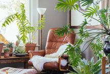 Green Home / The place where Eco-Friendly and Fashion-Friendly meet.
