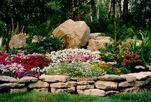 Landscaping Ideas / by Robin McGrath