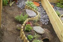 tortoise garden ideas
