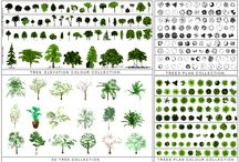 Tree CAD collections / Enhance your CAD drawings with our TREE CAD collections