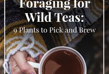 Foraging and wilderness