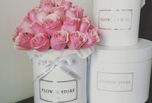 Flower Boxes / Flower boxes boxes of flowers inspiration wedding roses whote roses pink roses flower store fashion boxes laduree maison des fleur bloom des fleur fleur de dieu kwiaty roses rose