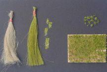 Tutorials - grass