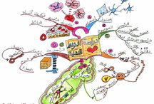 Mohamed Moustafa / Mind maps created by Mohamed Moustafa. Mohamed is a Buzan licensed instructor. You can contact him @ www.thinkbuzan.com/ar/trainers/mohamed_moustafa / by IQ Matrix