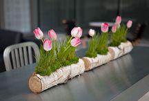 bloemschikken voorjaar