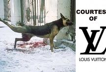 Anti-Animal Cruelty Inspiration