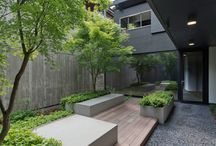 Backyard/courtyard ideas