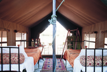 Glamping / Luxury Tented Camps Across the World