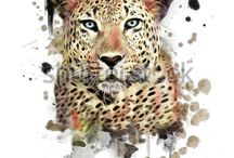 Leopard gr