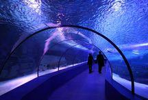 Turkey attractions /  Turkey attractions