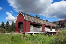 Local photography! / Sherwood Park, Alberta