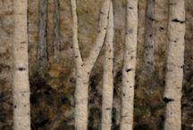 Needle felting- birds & forest