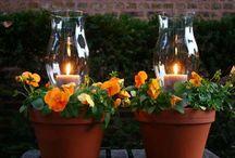 inšpirácie do záhradky