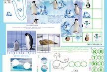 Arctic and Antarctic Арктика и Антарктика