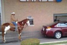Texan:  5th Generation .  Yep!