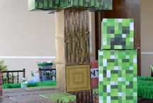 Boys birthday /minecraft / by Lucinda Saucier-Miranda