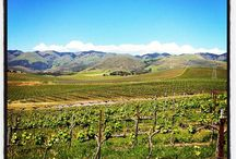 San Luis Obispo Wine Country Picks / IMHO the best wineries to visit in SLO County. May also include shops and delis. :)