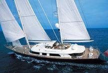 vela: Life begins At 40 knots