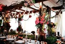 My LuxBride Wedding Palette / by Jordan Auleb
