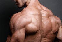 部位:筋肉