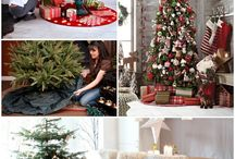 Christmas Trees Decorating And Caring!