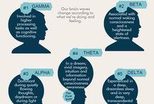 Psyke/soma, hjerne, hormoner mm