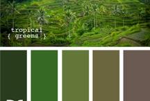 Multi vert