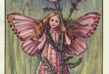 Cicely M Barker and her art / English, 1905-1973,  Fairies updated 09 Apr 2016 (doubles erased), Cicely Barker created 168 flower fairy illustrations in total for her many books