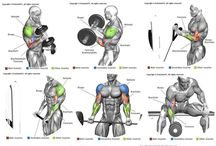Weight lifting and training