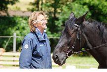 Trust-your-Horse Impressionen