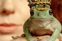 kiss some FROGS, to find that PRINCE / Pucker up, sweet prince!