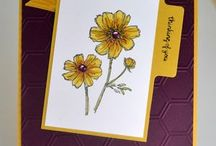 Stampinup In Colours 2014=15