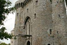 Castle,chateau, manoirs et autres maisons de maitre / Le patrimoine européen est riche de plusieurs milliers de bâtiments très bien conservés. Ce patrimoine architectural qui débute au moyen age jusqu'au 19 éme siècle est très précieux, nous devons le protéger.