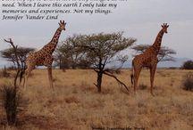 Travel Quotes / Inspiring Travel quotes