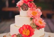 Cakes / by Sue Brousseau Kreft
