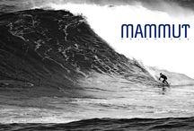 Familia Mammut / Ellos son parte de la familia @MammutPolarized
